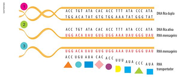 Exemplo de uma síntese de um texto