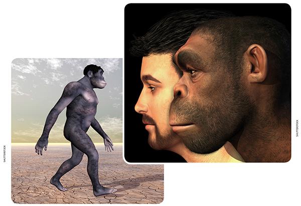 universia enem a espécie humana no reino animal texto a espécie